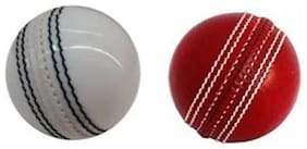 Labh Traders cricket leather ball pack of 2