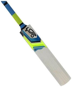 MDN Cricket Bat Popular Willow Multi