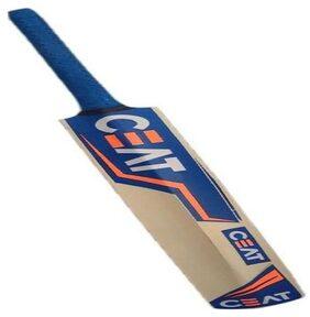 MDN Cricket Bat Popular Willow Blue