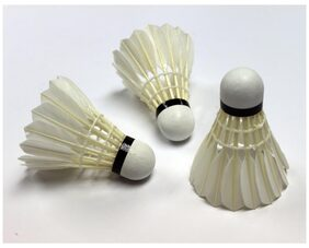 (Pack of 20) Power Good Quality Feather Shuttlecock