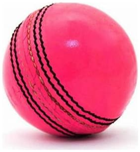 Pink Leather Cricket Ball Pack of 1