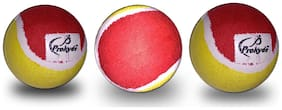 Prokyde Tennis Balls(Pack of 3)