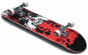 Protoner Skate Board-Assorted (Size-M)