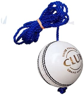 PSE Priya PSE Priya Sports Leather Club Practice Hanging Cricket Ball White