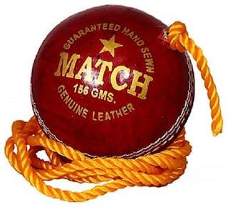 PSE Priya PSE Priya Sports Leather Match Practice Hanging Cricket Ball Red