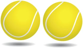 PSE Spride Tennis Ball Cricket Ball Green Pack Of 2