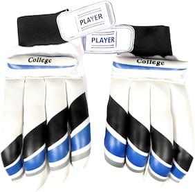"""Rai"" Cricket Player Batting Gloves 'Men' Size (Multicolour of Blue, Black, Gray)"