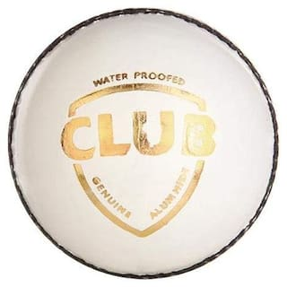 RDS 2 Panel White Cricket Leather ball