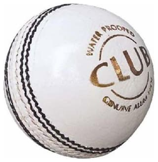 RDS CLUB 2 Panel Perfect Shape Leather Cricket Ball