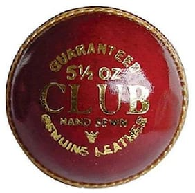 RDS Genuine 2 Panel CLUB Leather Cricket Ball