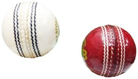 RDS Red & White CLB 2 Panel Leather Cricket Ball