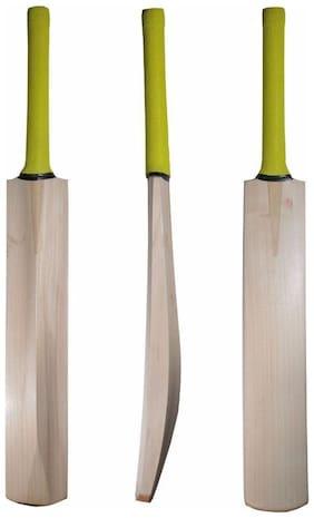 RDS Thick Edges  Kashmir Willow Cricket Bat