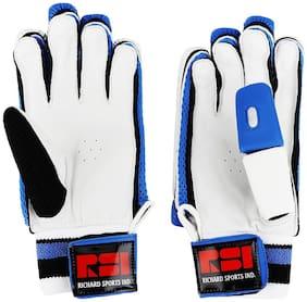 Richard Victory Cricket Gloves, Mens