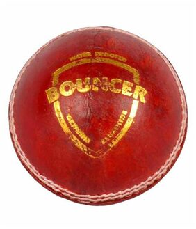 Sg Bouncer Leather Cricket Ball(Pack Of 2)