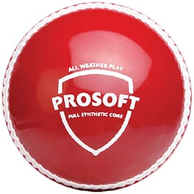 SG Prosoft Synthetic Cricket Ball-Red