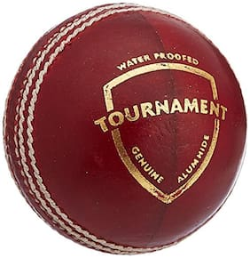 SG Tournament Leather Ball