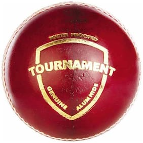 SG Tournament Leather Ball (Pack Of 12)