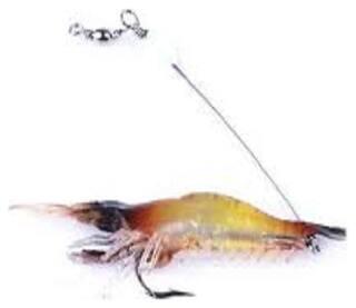 Soft Silicone Prawn Shrimp Fishing Lure Hook Bait Tackle