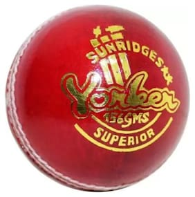 SS YONKER  (4 pc) CRICKET LEATHER BALL