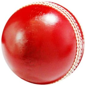 st gold Cricket Leather Ball  (Pack of 2, red)