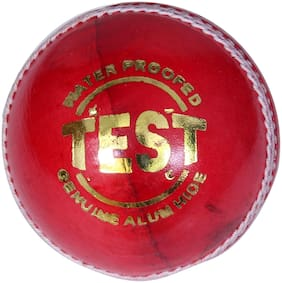 St Gold Test Cricket Ball In Leather 4 Piece Pack Of 1