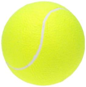 Tahiro Green Tennis Ball - Pack Of 1