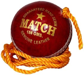 Tima PTM Match Red Practice Hanging Cricket Ball