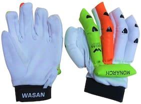 Wasan Cricket Batting Gloves (10-16 years)