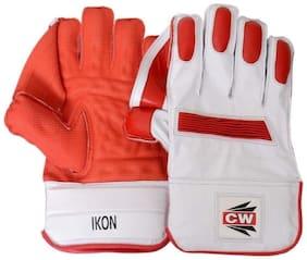 """Wicket Keeping Glove """"CW IKON"""""""