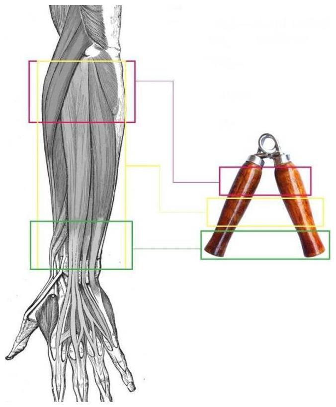 wooden handgrip
