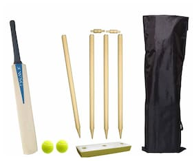 Wsg Cricket set Full Size for Adults