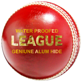 ZAP League Cricket 4 pc Leather Ball