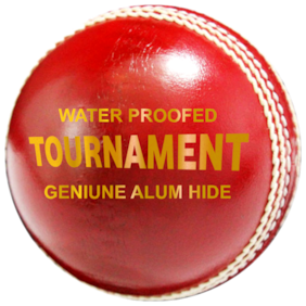ZAP Tournament Cricket 4 pc Leather Ball