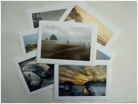 8 Variety Nature Themed Blank Note Cards w/ Envelopes    Photo Greeting cards
