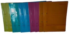 A-Mart  Laminated Cobra File of Assorted Colors PACK OF 10 FILES