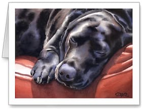 BLACK LAB DOG GREETING NOTE PARTY INVITE THANK YOU BIRTHDAY ANNIVERSARY CARDS