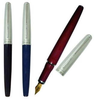 Camlin Elegant Fountain Pen Set ( Assorted Body Colours)