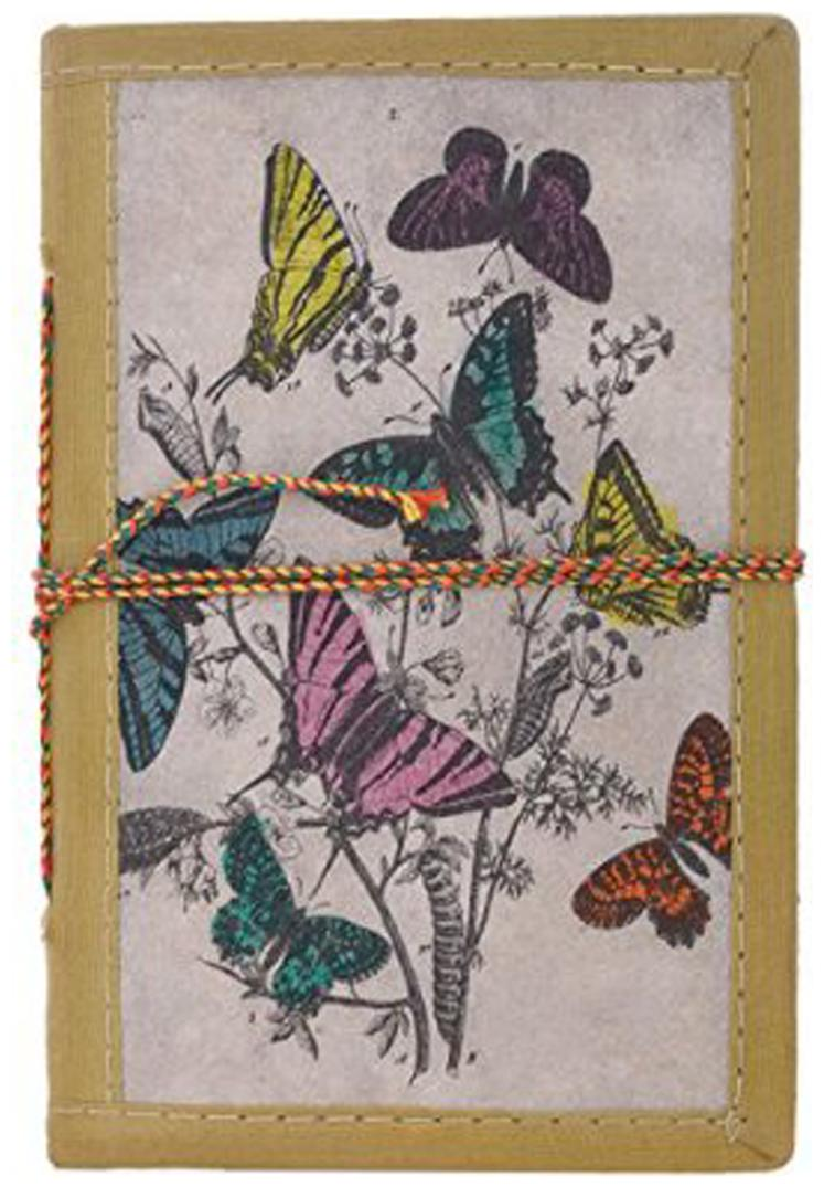 Craft Play Butterfly Journal