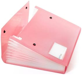 DataKing Polypropylene Expanding File With 13 Pockets With Name Card, Size A4, Color: Pink, Free Delivery. (Set Of 1 Pink)
