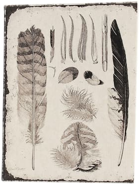 De Kulture Vintage Feathers Illustration Pocket Diary