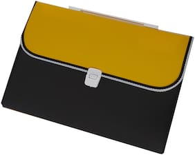 Plastic File Folder with 13 Pockets, Handle, Index Tab, A4 Size