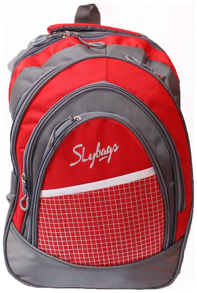 WONDER STAR 25 L School bag   Backpack   Red   Grey