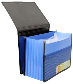 Solo Document Bag (Set Of 1- Blue)