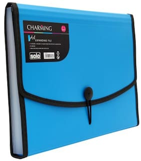 Solo Expanding File (Set Of 1- Blue)