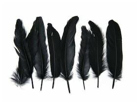 USA SELLER | 1 Pack - Black Goose Satinettes loose feathers 0.3 oz. Craft Art