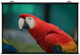 XCINE XC75Maptype screen: 100 inch diagonal screen size