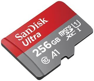 SanDisk SDSQUAR-256G-GN6MA 256GB Class 10 MicroSD Card (Red & Grey)
