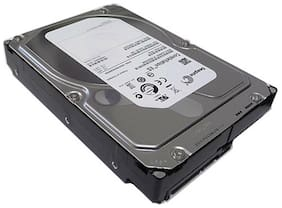 "Seagate ST32000644NS 2TB 7200RPM 64MB Cache SATA 3.0Gb/s 3.5"" Desktop Hard Drive"