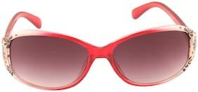 ADINE Regular lens Oval Frame Sunglasses for Women