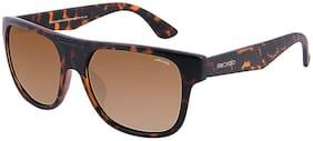 ARCADIO Polarized lens Wayfarer Sunglasses for Men , Sunglass & Warranty card